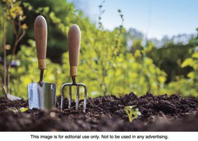8 Garden Tools For Beginners Community Washtimesherald Com