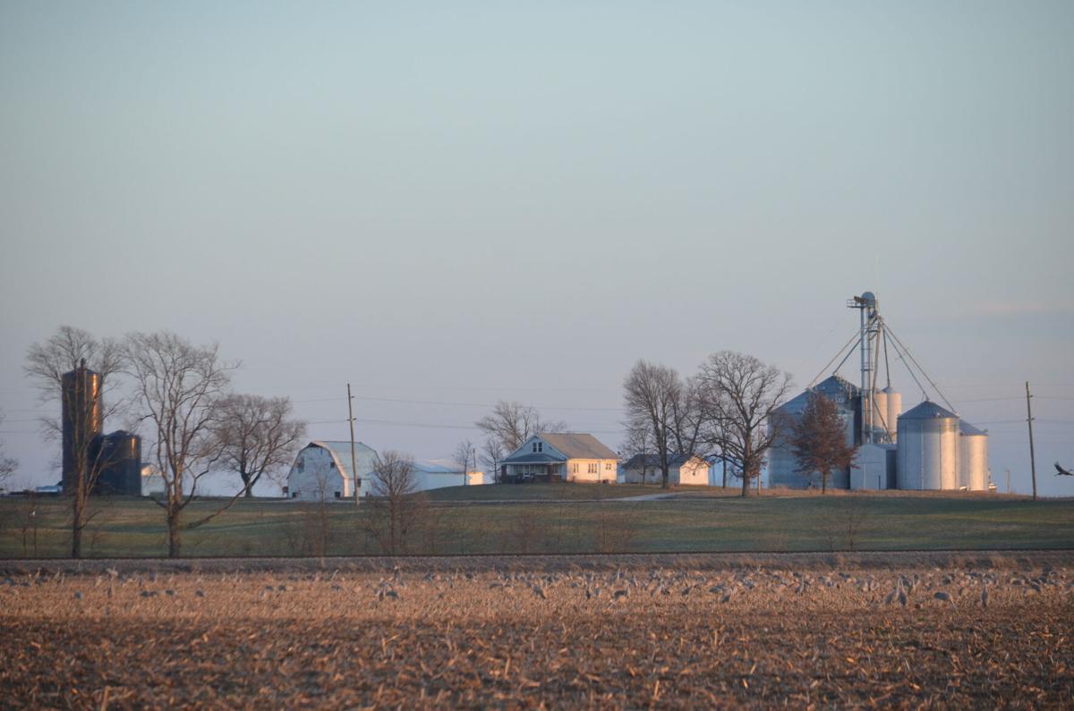 Nugent Farm