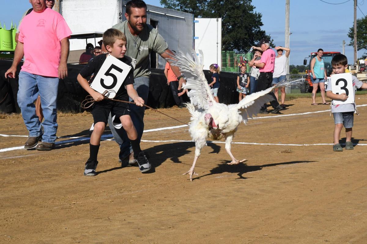 turkey heat race
