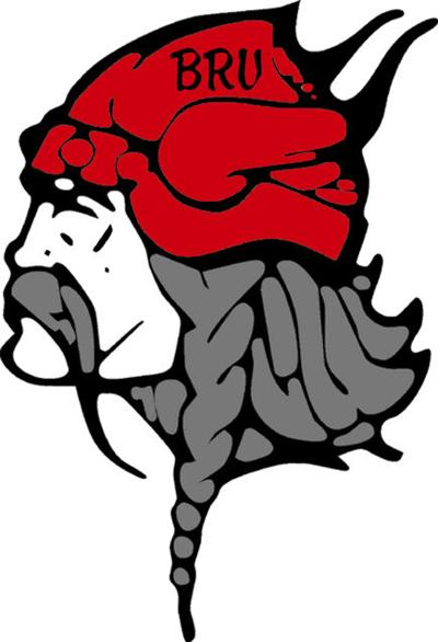 BR Vikings logo