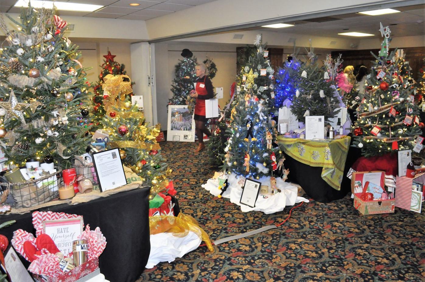 Christmas Trees 2021 Watauga Democrat Festival Of Trees Raises 30 000 For Wyn Mountain Times Wataugademocrat Com
