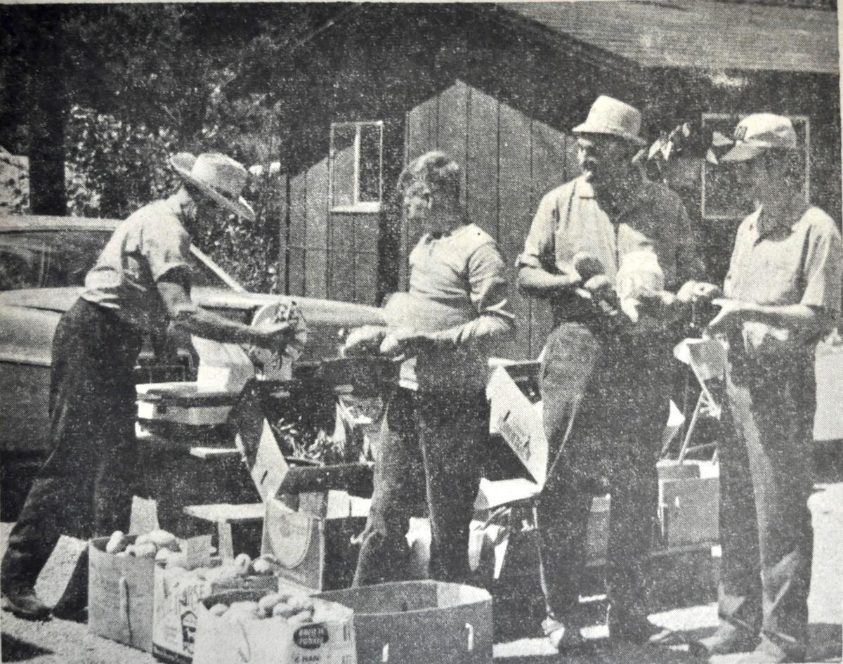 George Hamilton first year of Watauga Farmers Market