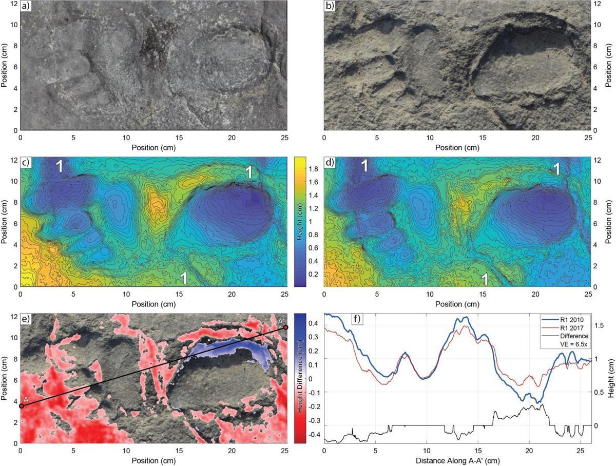 tanzania-footprints-point.jpg