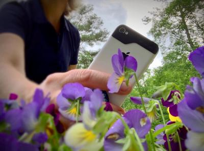 A smartphone is a powerful gardening tool.