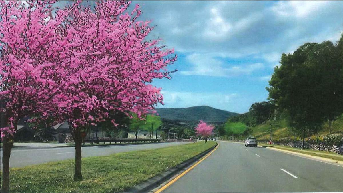 Valley Boulevard rendering