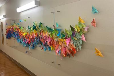 Wings of Hope project