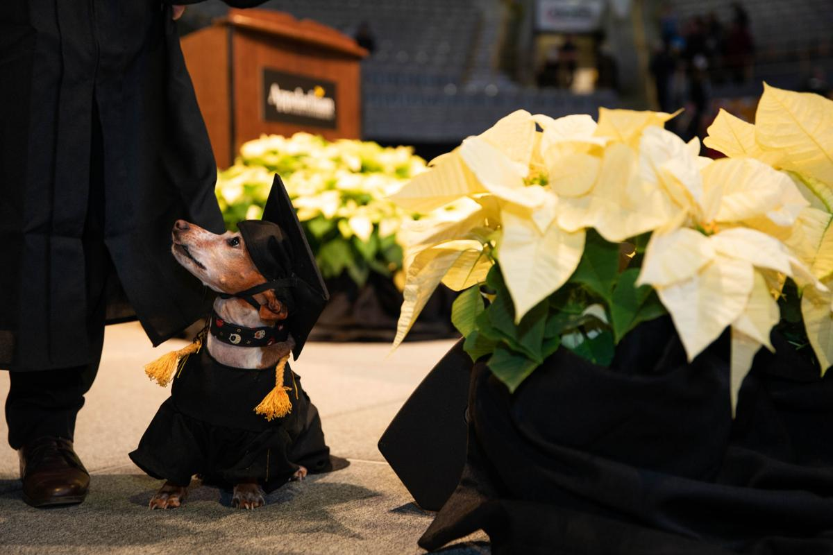 commencement-11-online-gallery-large.jpg