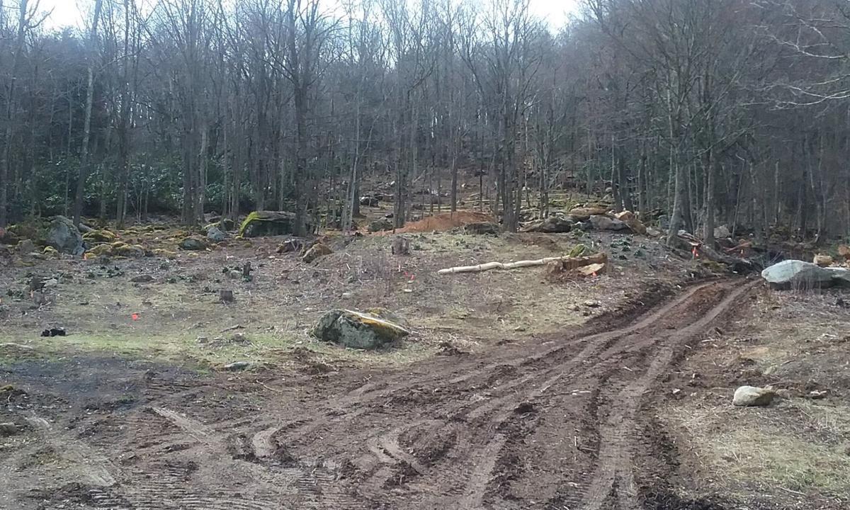 The future mountain coaster site
