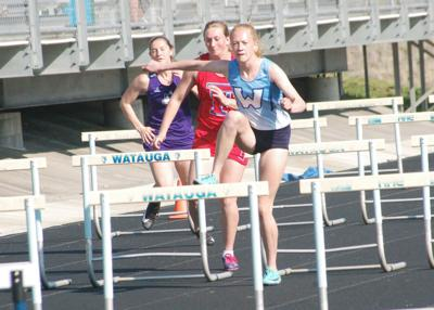 Brown captures win in hurdles