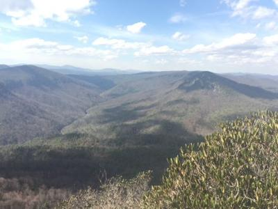 Panoramic photo of Linville Gorge