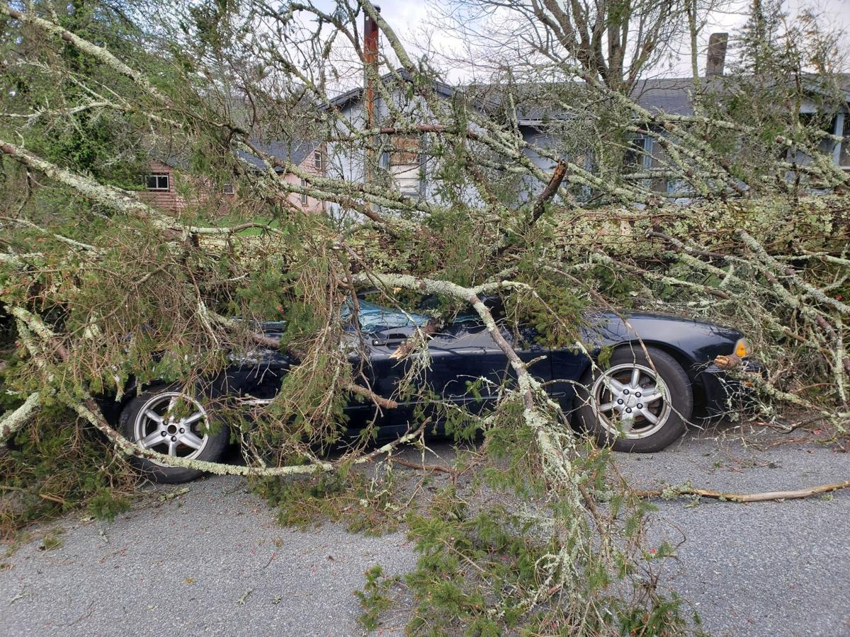 A car was totalled by a fallen tree on Clark Street in Blowing Rock on the night of April 15.