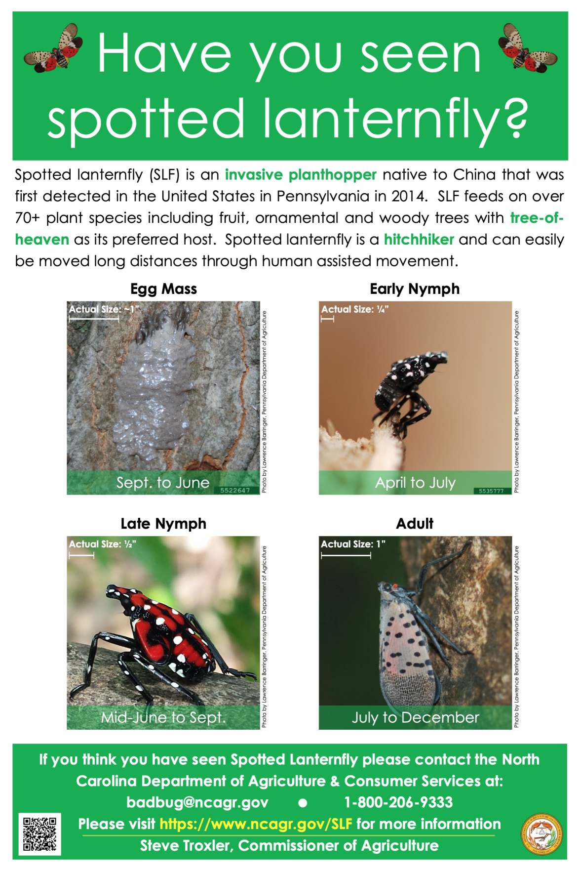 Have you seen spotted laternfly?
