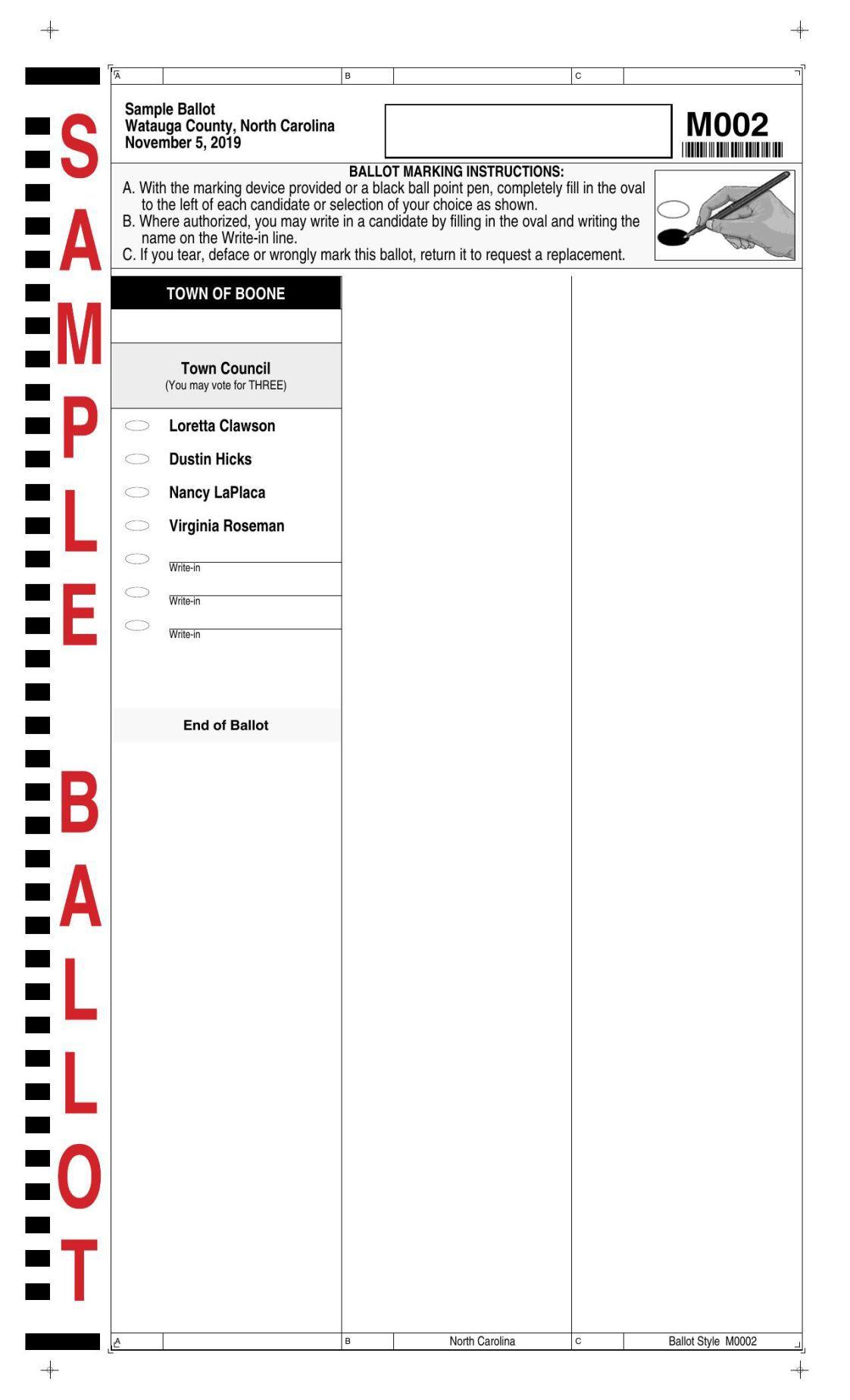 2019 Boone sample ballot