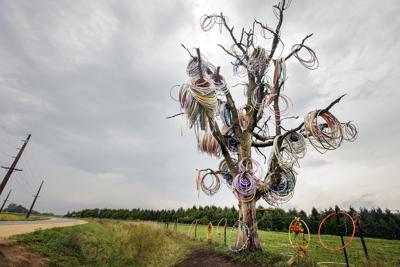 090919ho-hula-hoop-tree