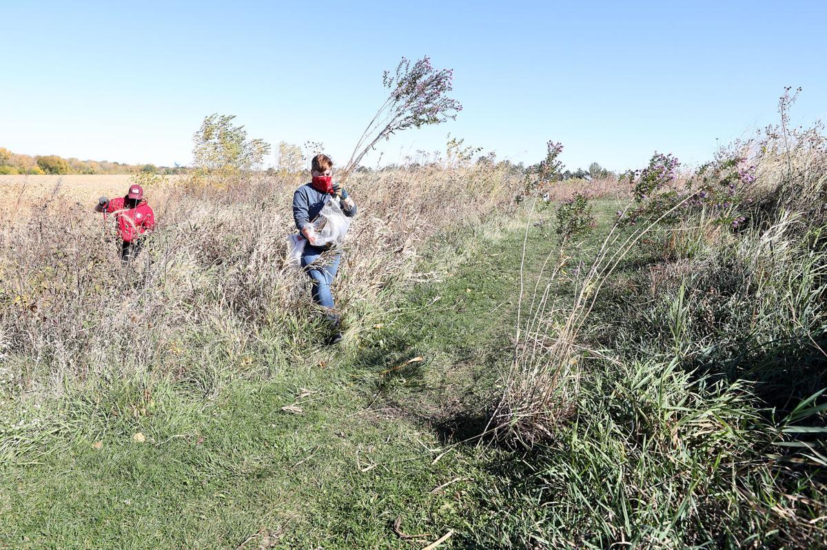 101220bp-prairie-plant-move-1