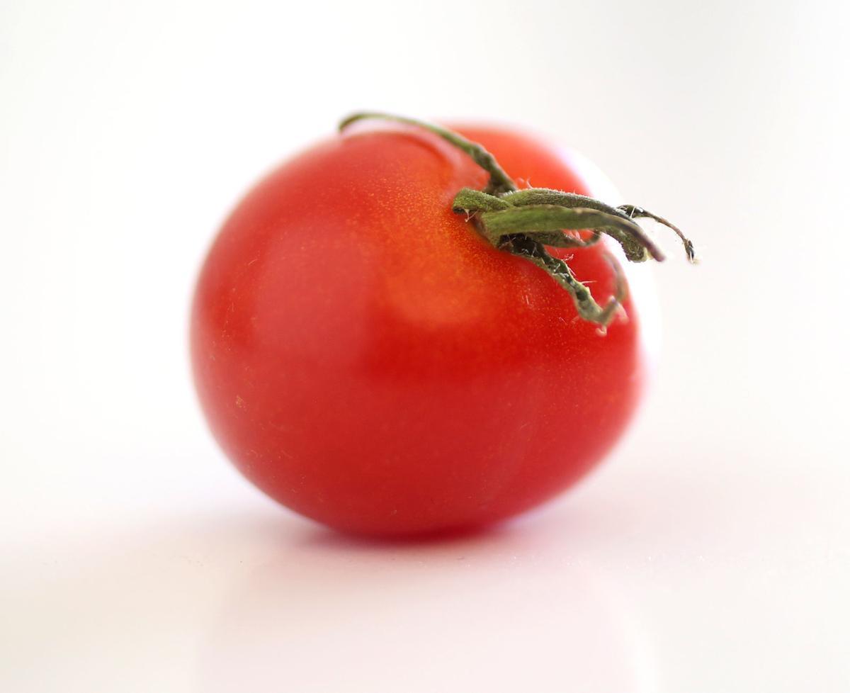081319bp-cherry-tomato-1