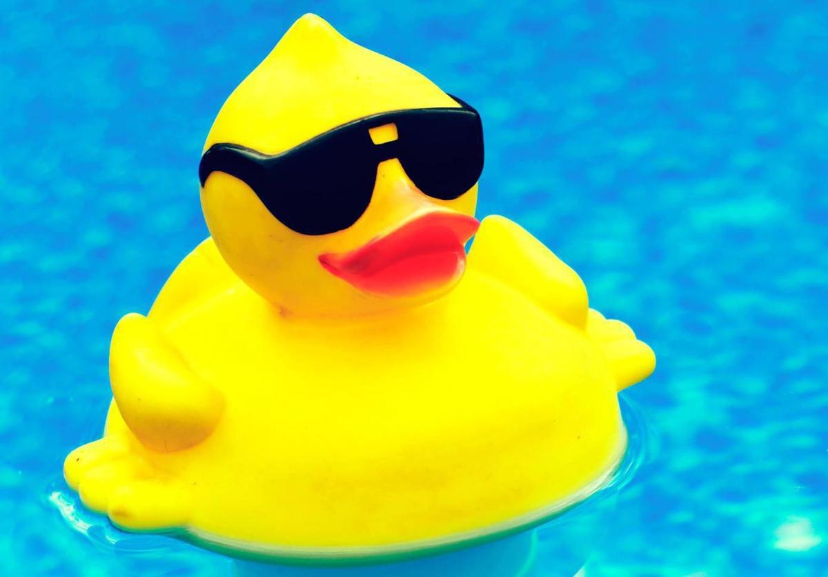 Rubber Duck Race Fundraiser Set Local News Wcfcourier Com
