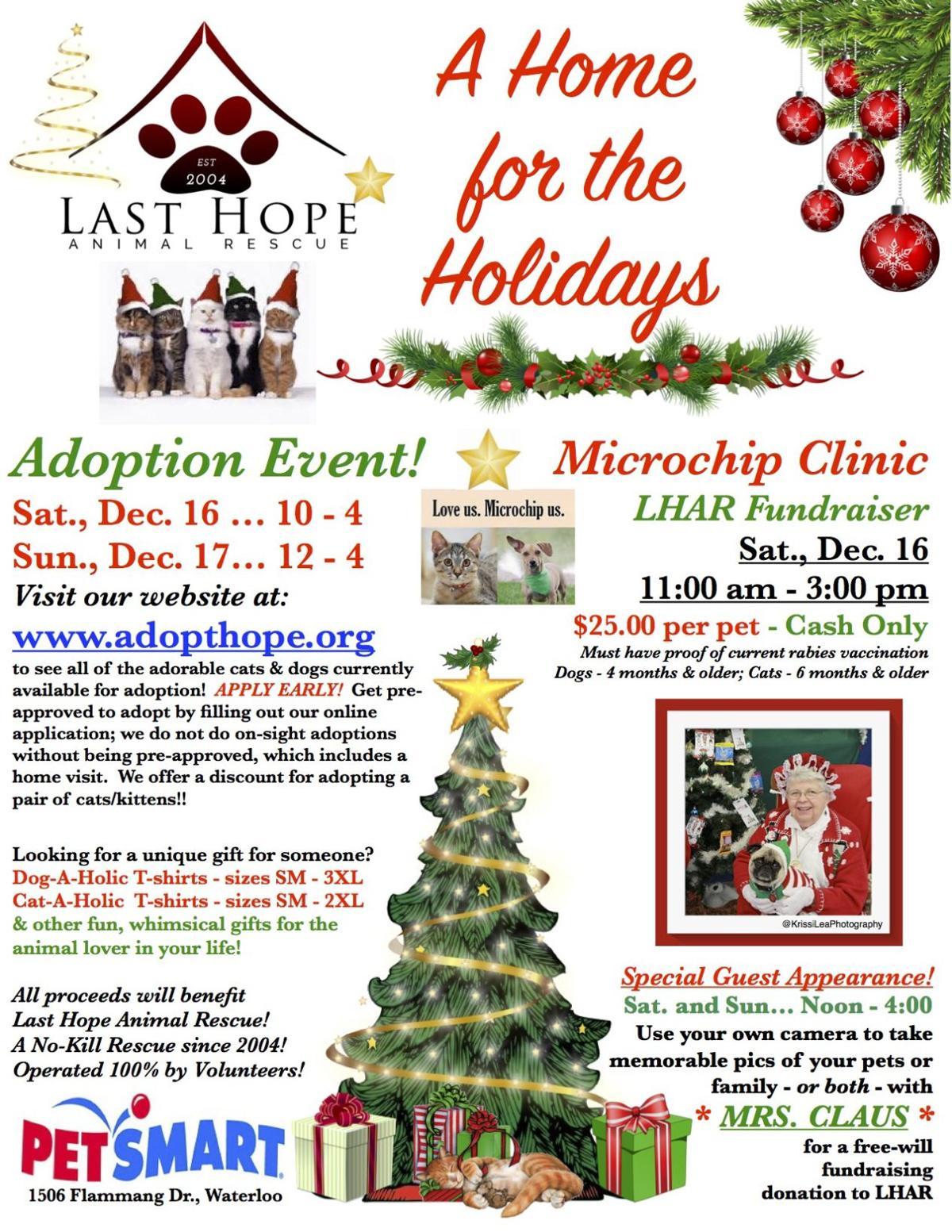 A Home for the Holidays Adoption Event