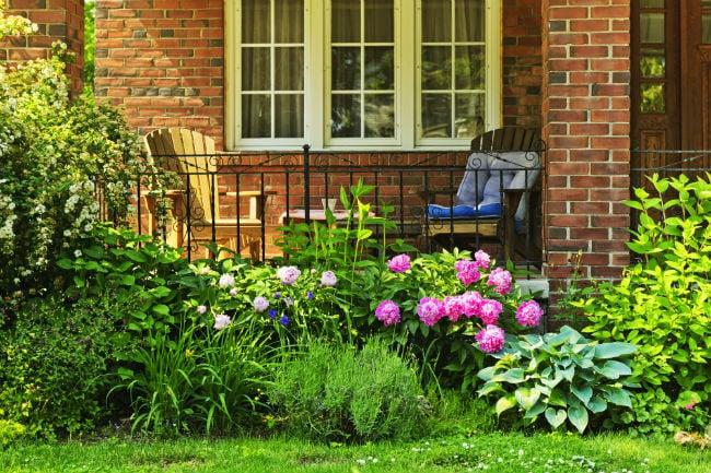 front yard garden 2 - Front Yard Garden