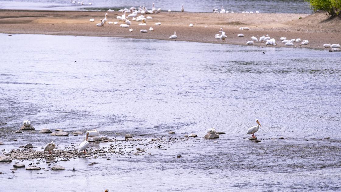 Drought conditions worsen across Iowa