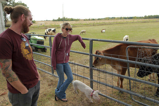 Iowa farm sanctuary works to rescue livestock