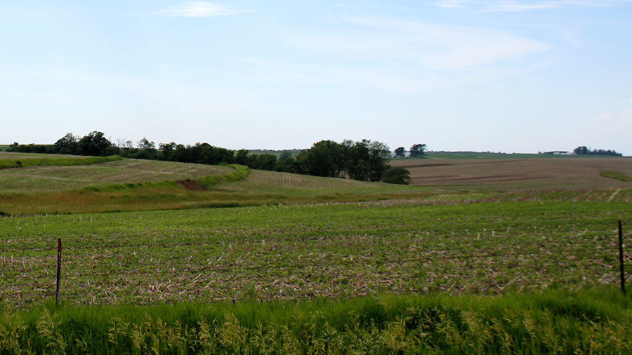 Iowa farmland