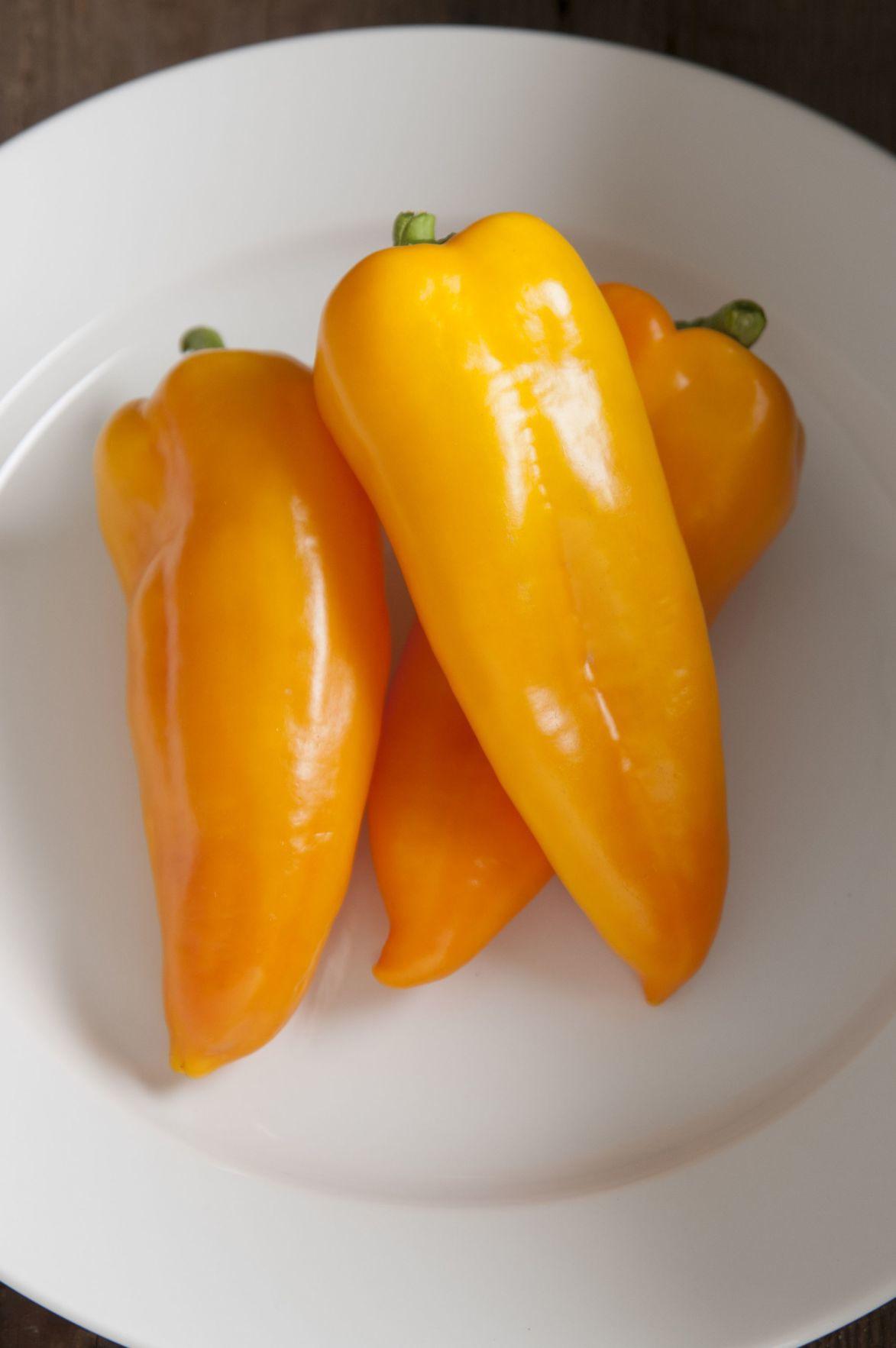 pepper-cornito-giallo