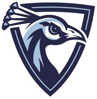 New Upper Iowa logo 2017