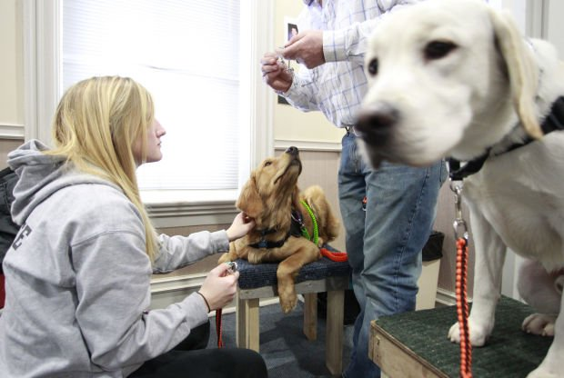 College Students Training Service Dogs For Vets Autistic Children