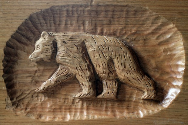 Carving out a niche: twelve year old woodcarver featured at iowa