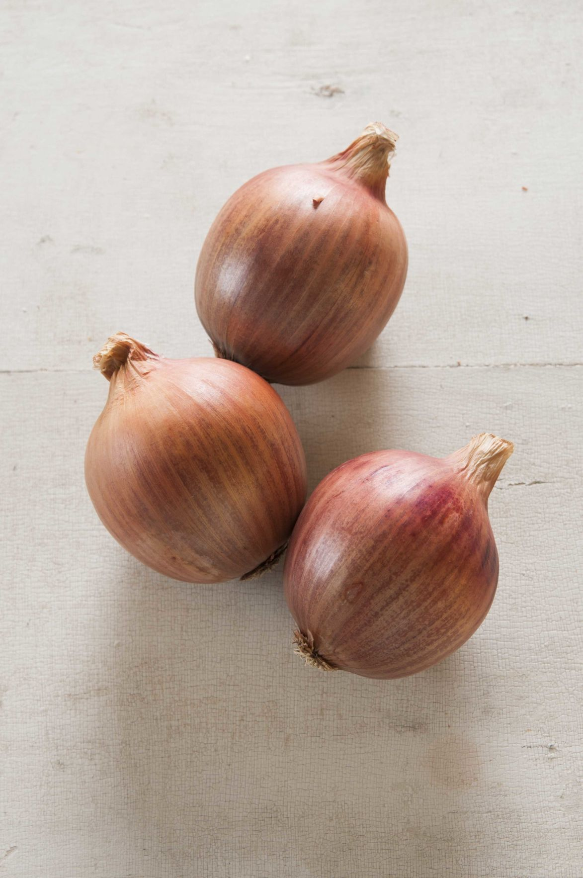 onion blush johnny select seeds.jpg