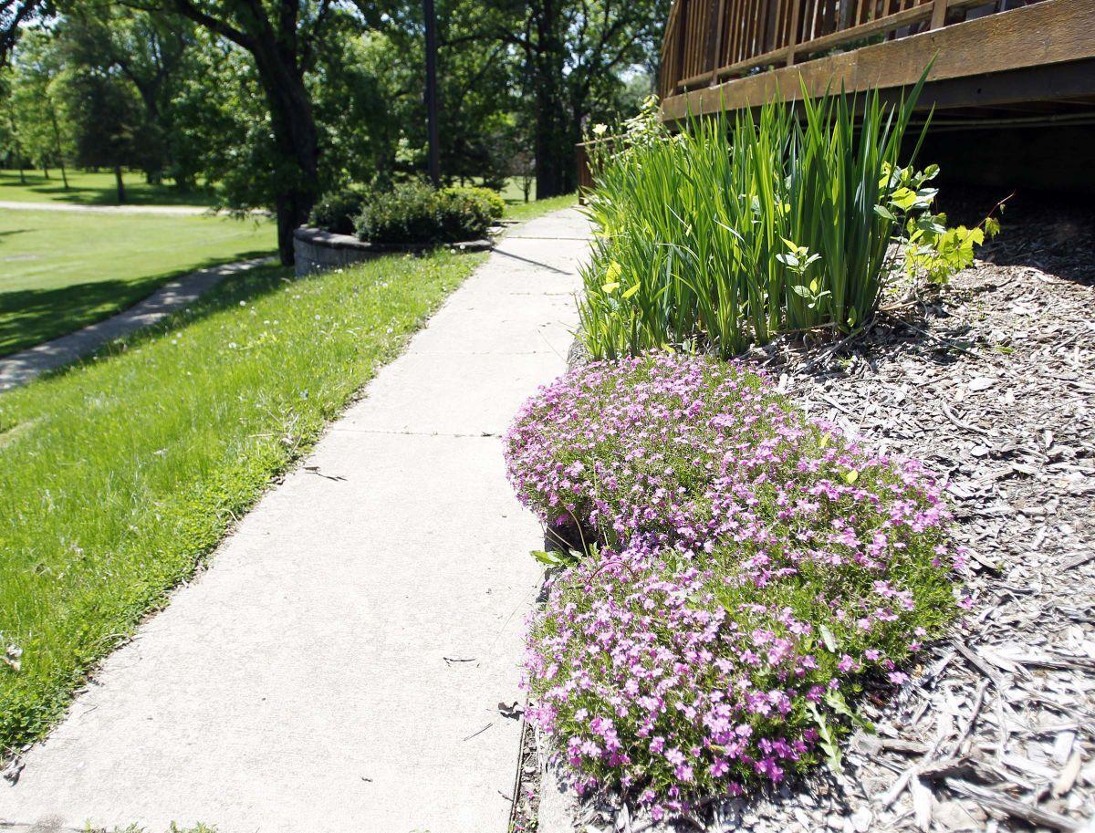 Flower Designs For Raised Garden B E A Html on