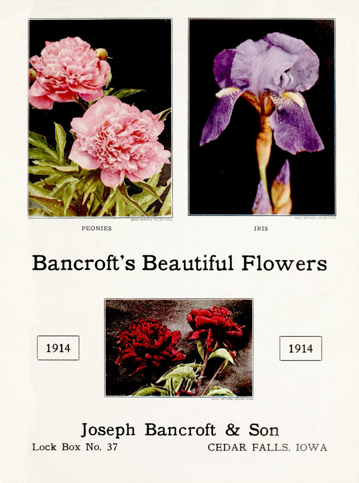 bancroft-1914-cover-bleed.jpg