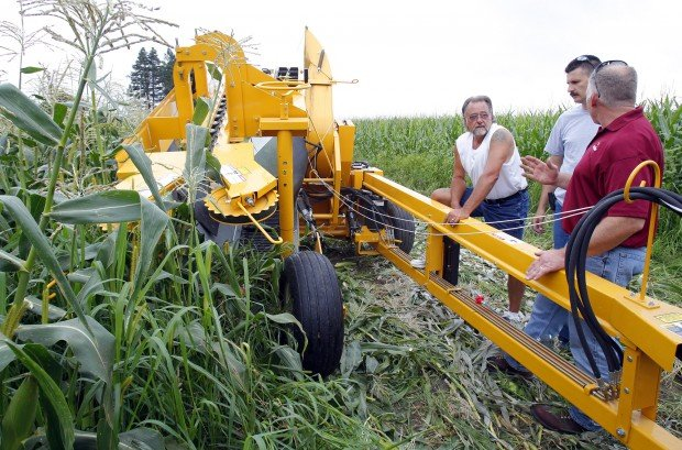 Pickin And Grinnin Corn Puller Eases Job Of Picking Sweet Corn