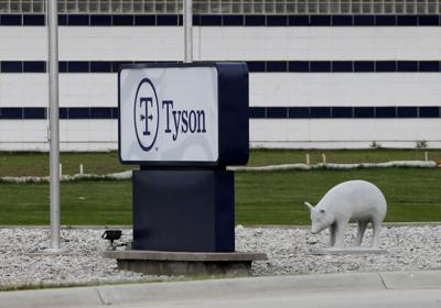 tyson-waterloo-pig-sign