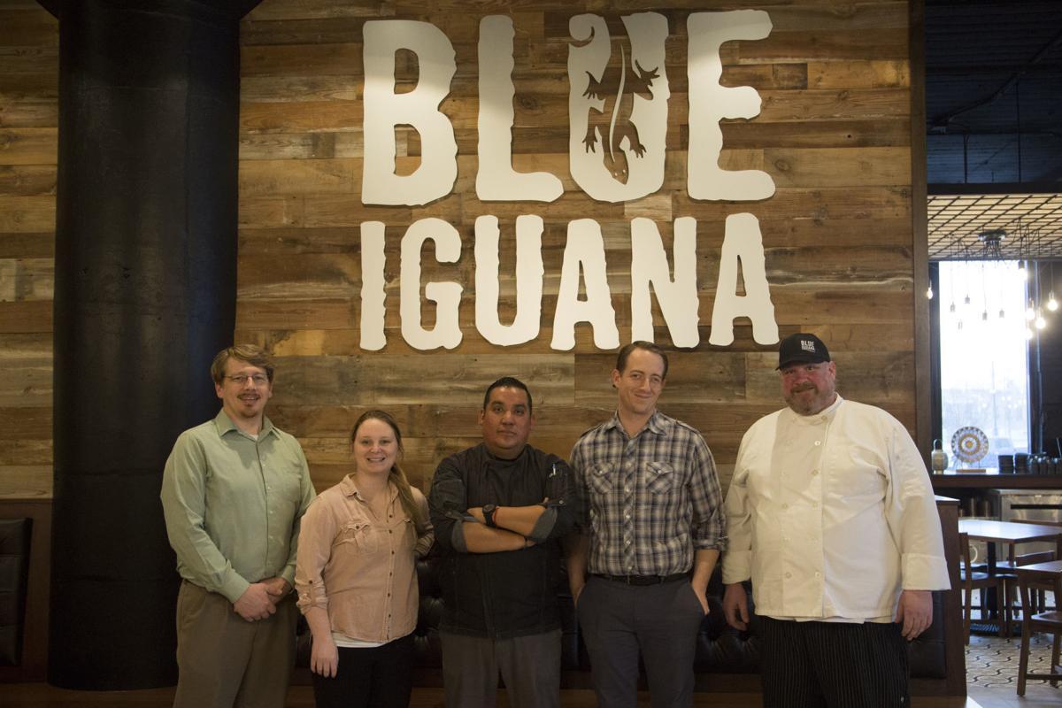 122818kw-blue-iguana-01