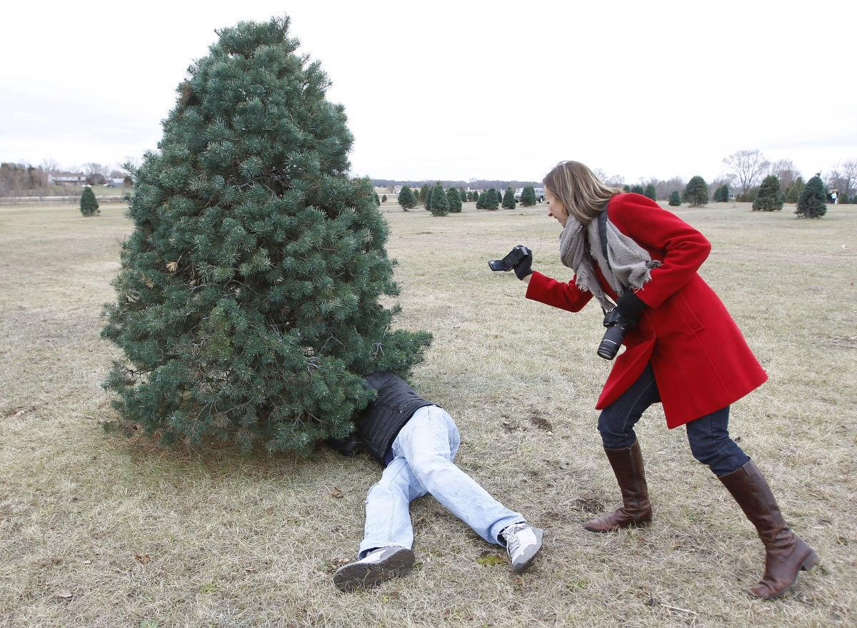 Christmas Tree Sales Off To Fast Start, Area Growers