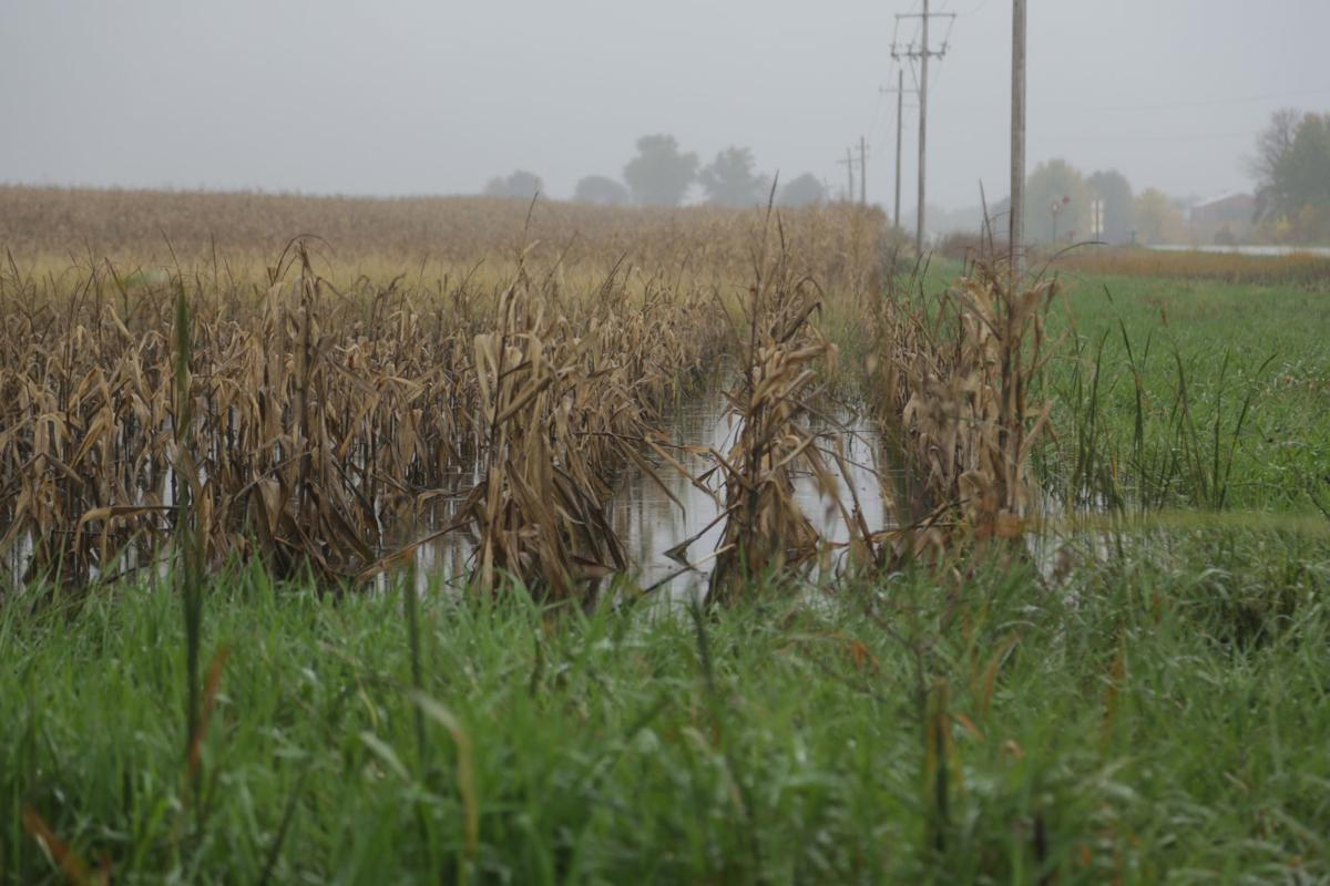 100818kw-floodedfield-03