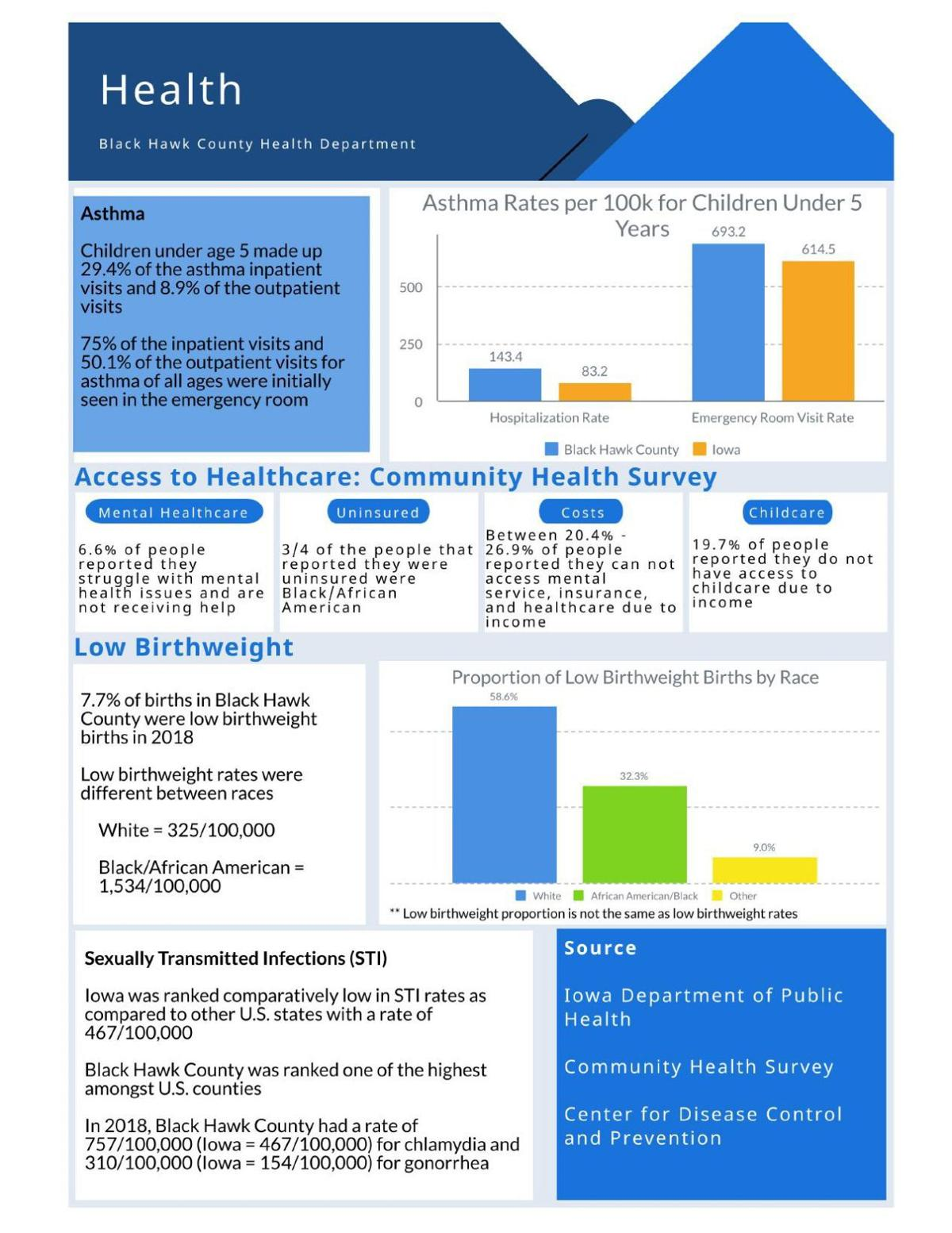 Black Hawk County Health Needs Assessment Page 3