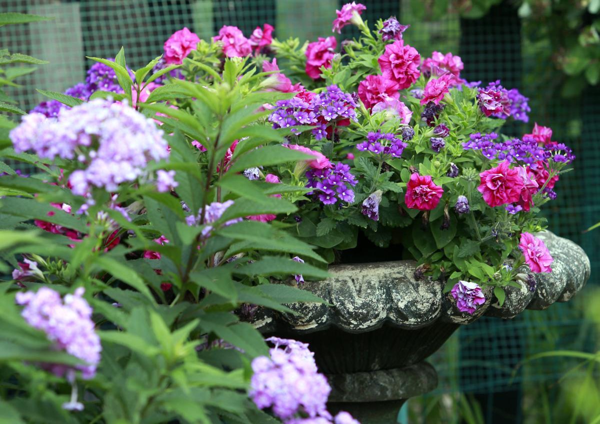 flower-pot-MAIN.jpg