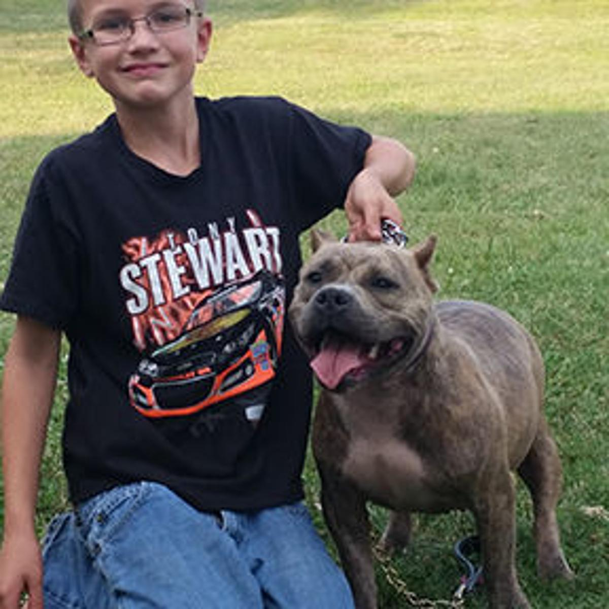Cunningham student invited to show bully dogs at national