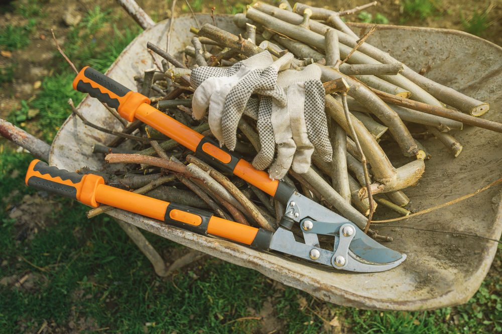 pruning-loppers