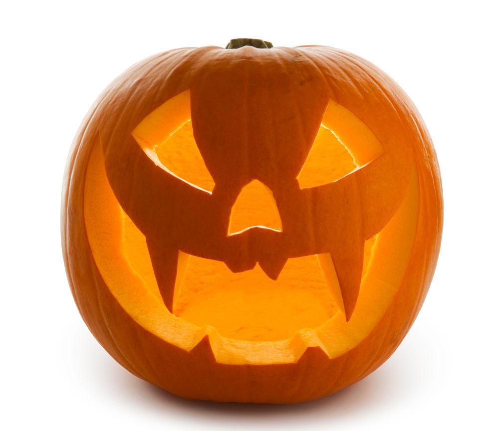 Heartland pumpkin farm opens | Local News | wcfcourier.com