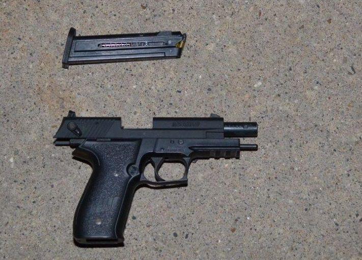 082115ho-seals-gun