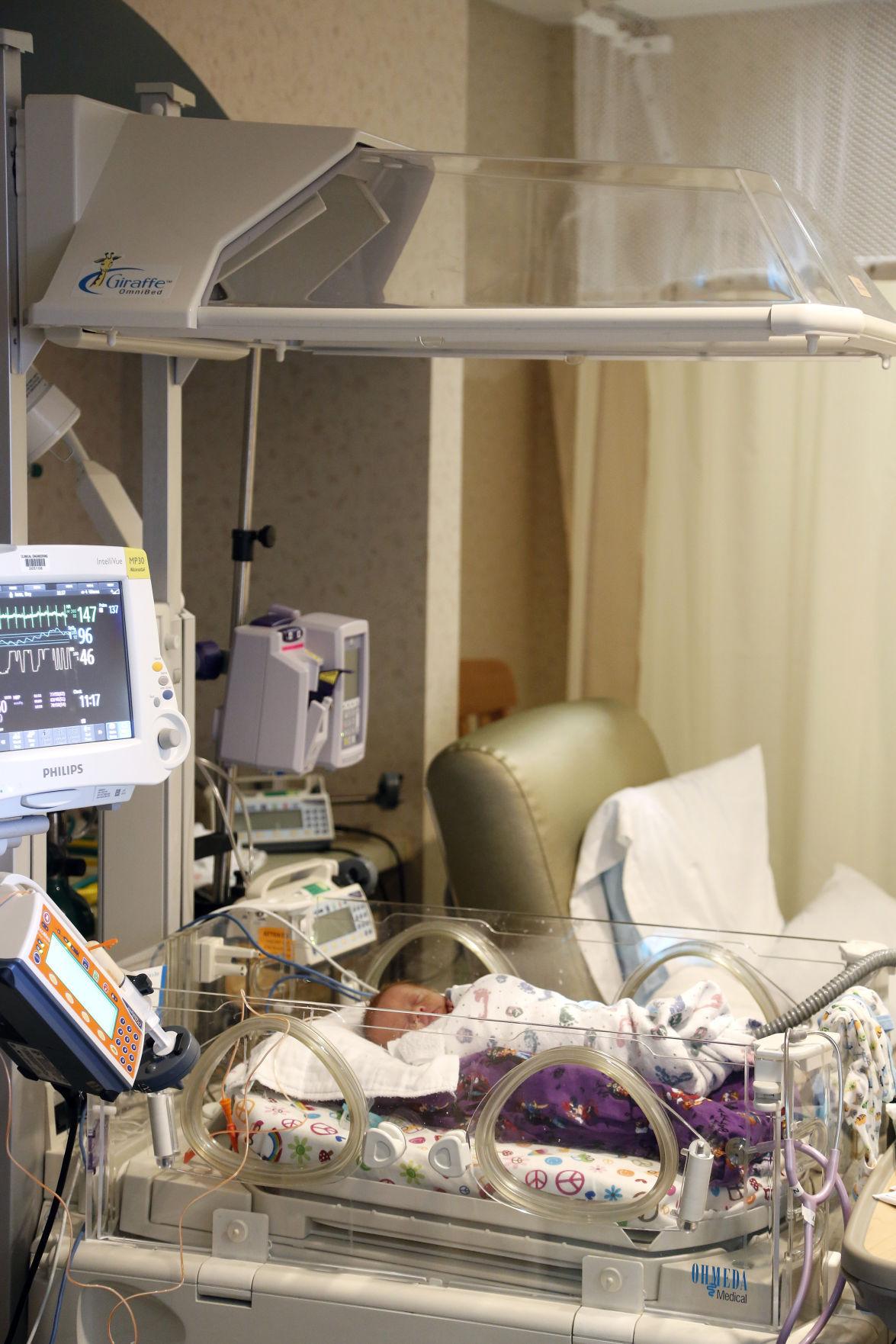 100516mp-Allen-Giraffe-incubators-1