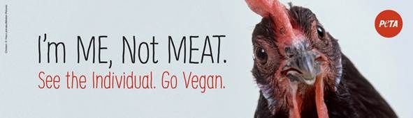 PETA billboard West Union May 2019