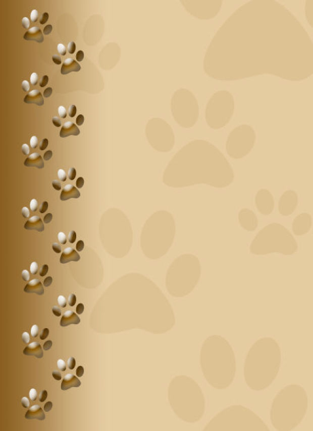 Dog paw print background - Dog print wallpaper ...