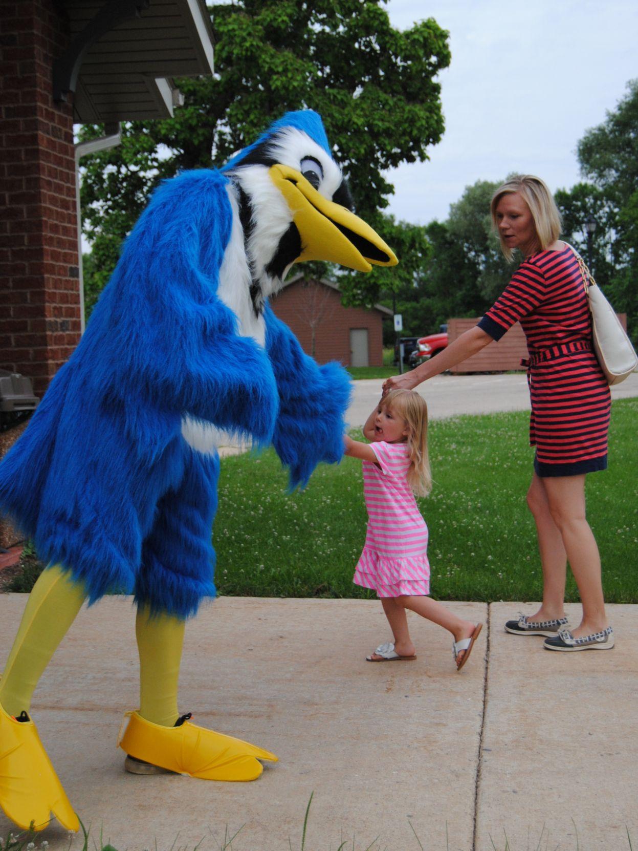 Johnson Creek Blue Jay mascot