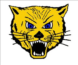 L-Cats go 1-1 at home triangular