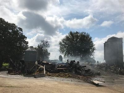 13 steers perish as fire destroys barn in Waterloo